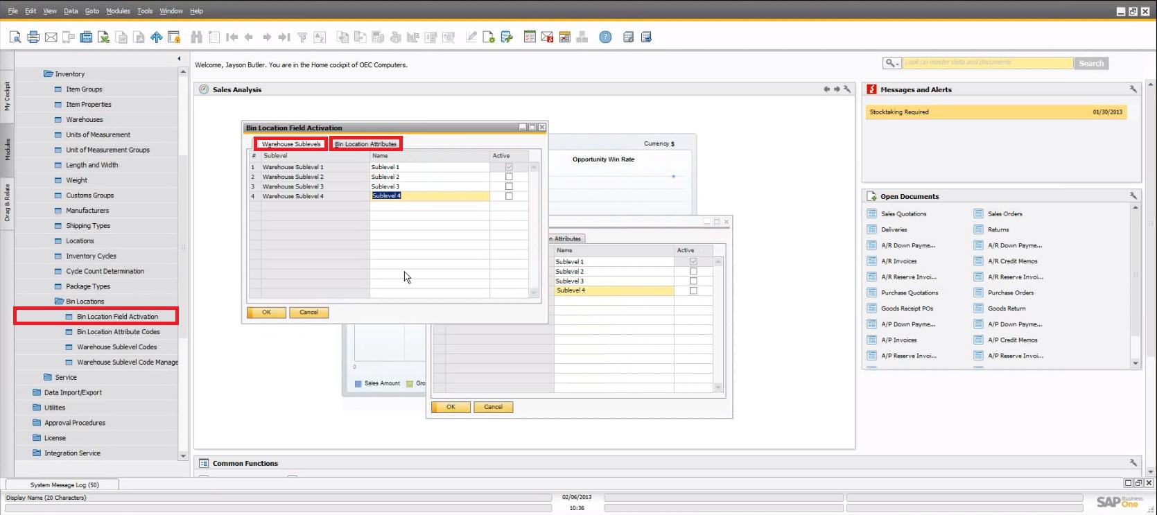 SAP Business One 9.0 Bin Location Activation