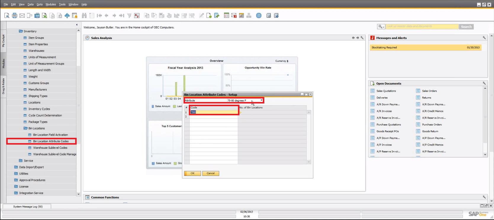 SAP Business One 9.0 Bin Location Attribute Codes
