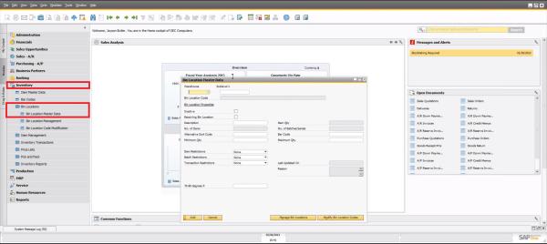 SAP Business One 9.0 Bin Location Master Data