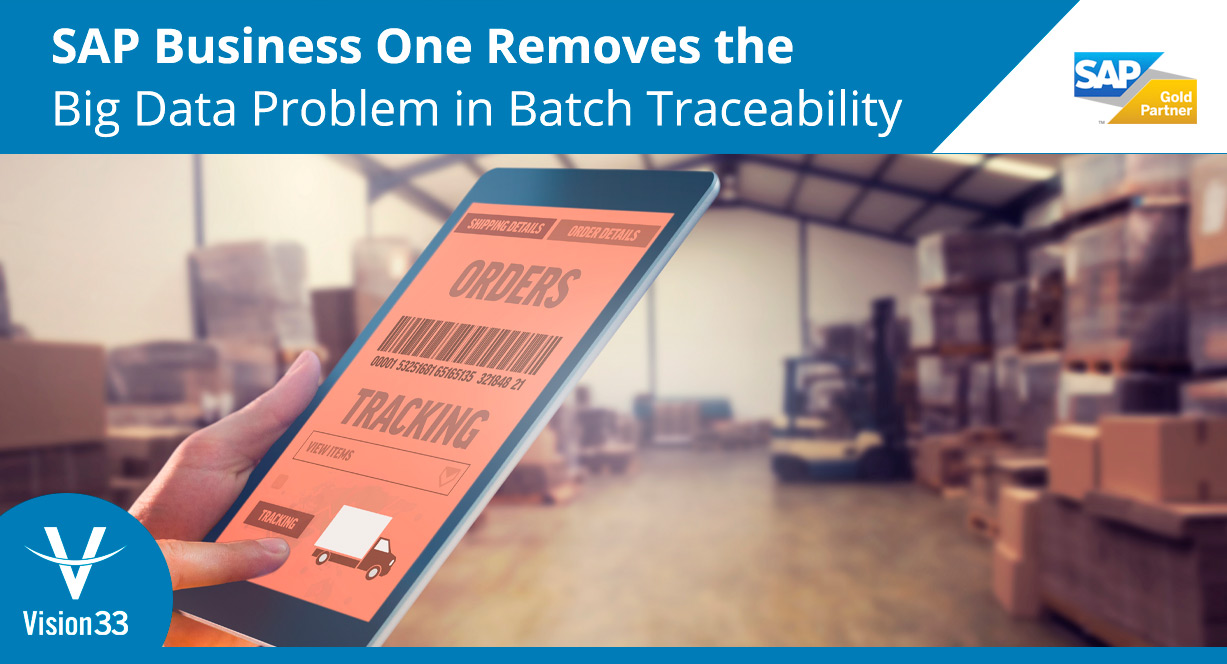 sap-business-one-removed-big-data-problem-in-batch-traceability7