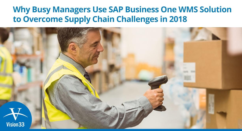 SAP-Business-One-9.3-WMS-nobutton