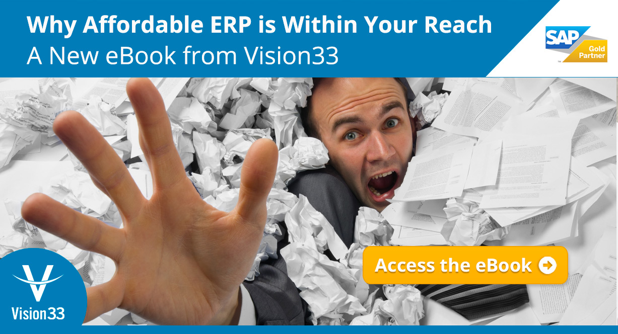 why-affordable-erp-is-within-your-reach-ebook-vision33-btn