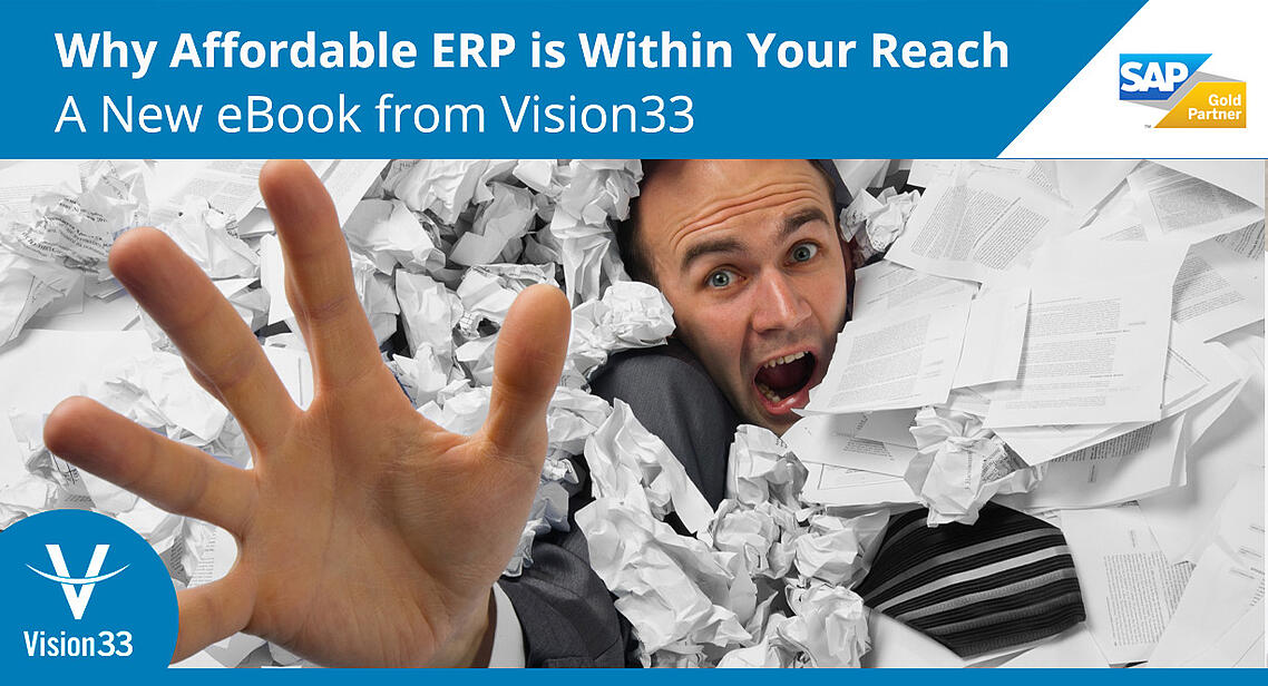 why-affordable-erp-is-within-your-reach-ebook-vision33