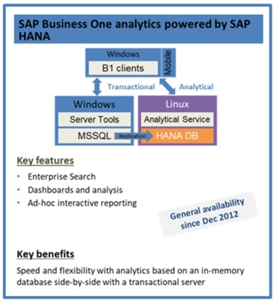 SAP-Business-One-Analytics-powered-by-Hana 3.jpg