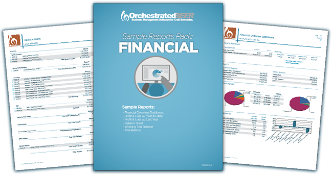 finance-report-pack-1024x538.png